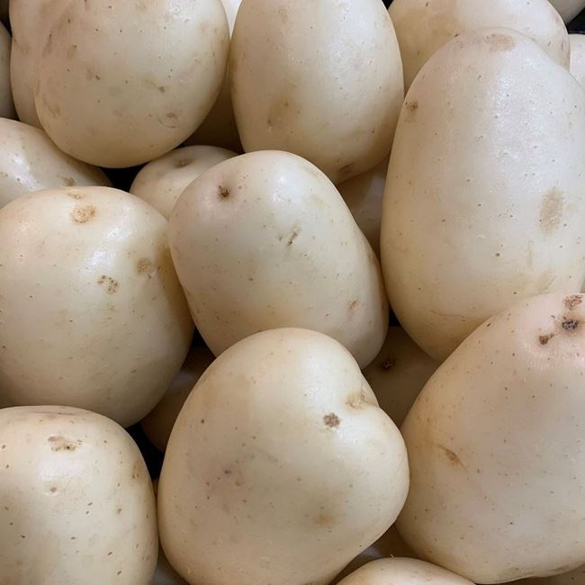 Picture of WASHED POTATO