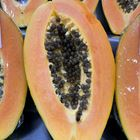 Picture of PAPAYA CUT