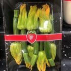 Picture of ZUCCHINI FLOWER