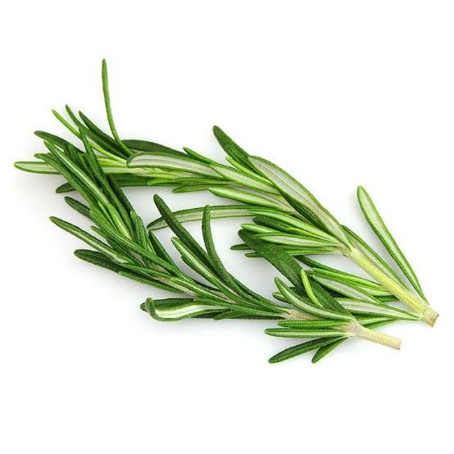 Picture of ROSEMARY (bunch)