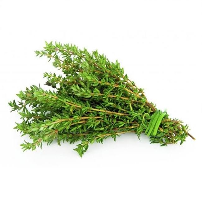 Picture of THYME (bunch)