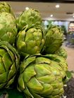 Picture of ARTICHOKE